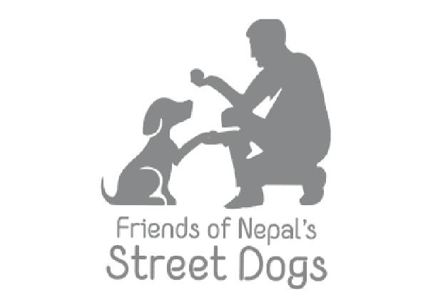 Nepal Street Dog
