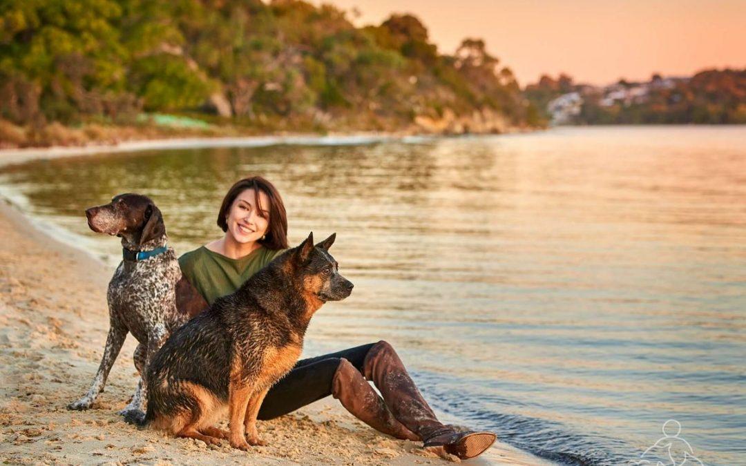 Bella and Koda's Sunset Pet Photo Shoot