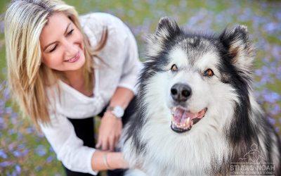 Zues, Applecross' Top Dog!